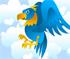 Jocuri Birdy