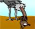 Jocuri Ostrich