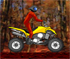 Jocuri Quad Moto
