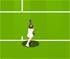 Jocuri Tennis 2