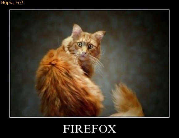 Animale - Firefox