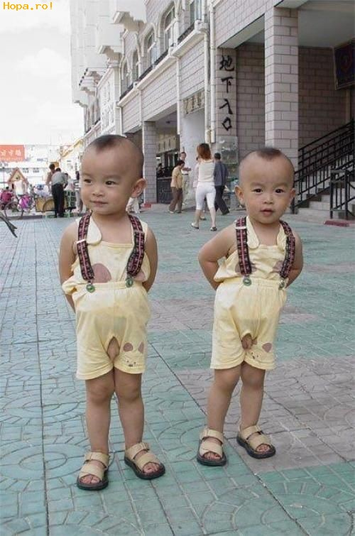 Copii - Gemeni haiosi
