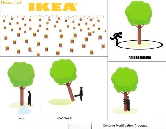 Caricaturi - Ce poti face cu un copac