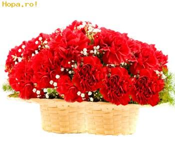 Flori - Cosulet cu garoafe