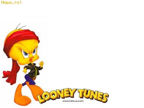 poze wallpaper. Looney Toons - Poze haioase