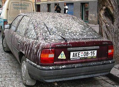 Auto Moto - Neinspirata parcare