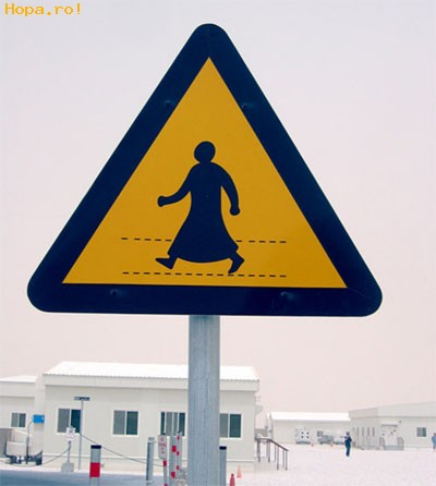 Ciudate - Atentie cine poate traversa strada!