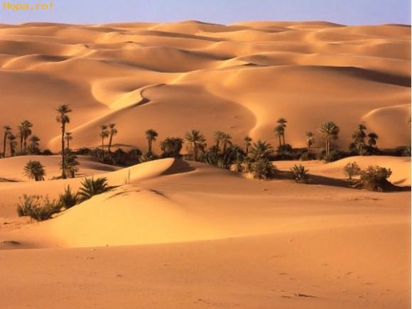 Peisaje - Desertul Sahara