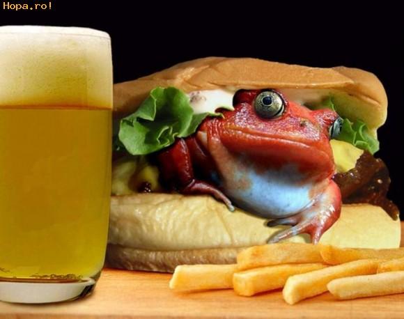 Ciudate - Frog Burger
