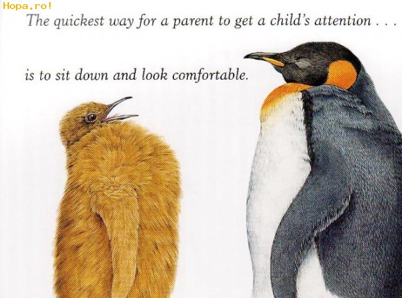 Caricaturi - Cum sa captezi atentia copiilor