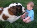 Copii - Doi prieteni