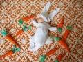 Copii - Bebe deghizat in iepuras