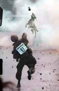 Animale - Cum se joaca soldatii