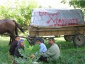 Din Romania - Caravana din dragoste
