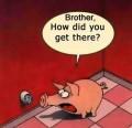 Caricaturi - Frate, cum ai ajuns acolo