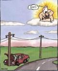 Caricaturi - Dumnezeu se joaca cu viata noastra,asa e?
