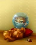 Animale - Pisica jmechera