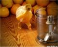 Diverse - Cum sa cari o portocala