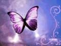 Artistice - Fluture mov