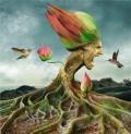 Ciudate - Floare
