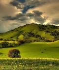 Peisaje - O calatorie imaginara