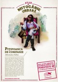 Cocalari - Pitipoanca de companie