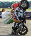Auto Moto - Biker