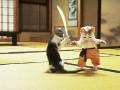 Animale - karate