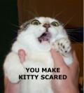 Animale - Nu mai agita pisica!!!