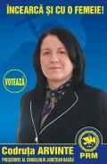 Din Romania - Afisaj Electoral in Bacau