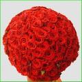 Flori - Amor