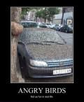 Auto Moto - Angry birds versiunea reala