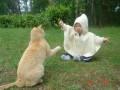 Copii - Buhuhu, pisi, eu sunt o fantoma dragalasa