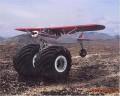 Auto Moto - Avion sau Jeep?