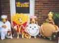 Animale - Halloween Canin