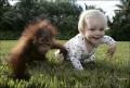 Copii - Doua maimutele