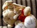 Animale - Dragoste mare