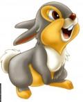 Desene animate - Iepurasul din desenele bambi