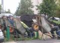 Din Romania - Sezlong pe santier