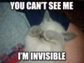 Avatare - I'm invisible