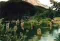 Peisaje - Lacul Rosu