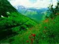 Peisaje - Primavara la munte
