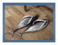 Ciudate - Cam asa arata papucii unui pescar