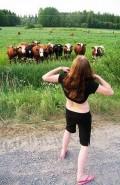 Animale - Recunoaste vaca din poza