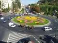 Animale - Circul a ajuns in Romania