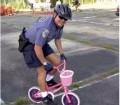 Diverse - Politia in actiune