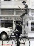 Ciudate - Echilibristica