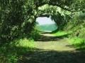 Artistice - Tunel natural