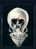 Iluzii - Balerina sau craniu?
