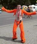 Ciudate - Fan Orange
